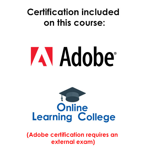 adobe certified courses
