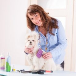 Dog Groomer Level 3 course