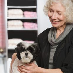dog groomer& start your own business level 3